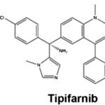 Tipifarnib (farnesyltransferase inhibitor)