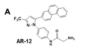 AR-12 (Antitumor/Antifungal Celecoxib Derivative)