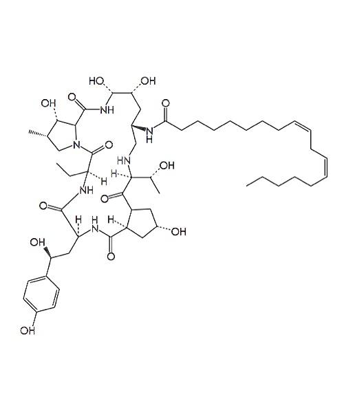 EchinocandinB