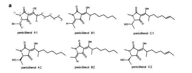 Penicillenol
