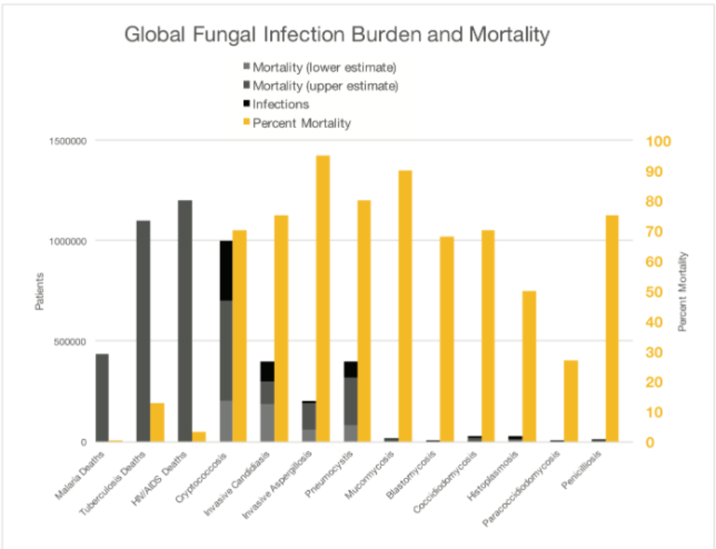 Global Fungal infection