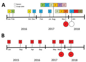 Genotyping results of Aspergillus fumigatus isolates in sputum cultures and on cough plates obtained from 2 participants with cystic fibrosis demonstrating aerosol formation of A. fumigatus, the Netherlands, 2015–2018