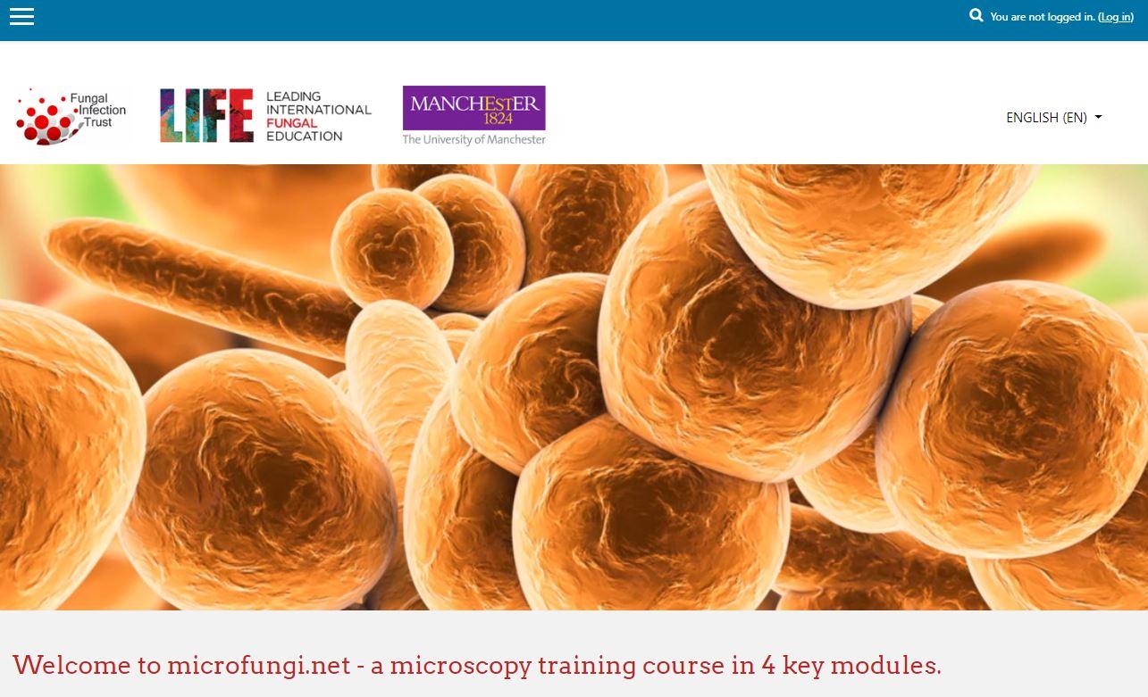 Image of the microfungi.net website